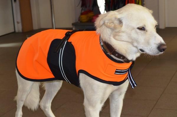 Softshell Hundemantel neonorange